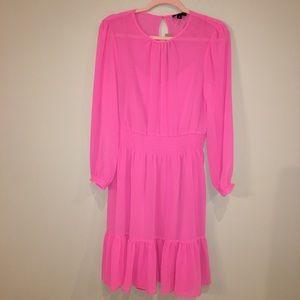 NWT j crew pink long sleeve sheer dress M